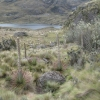 Quenca_national park_Hiking